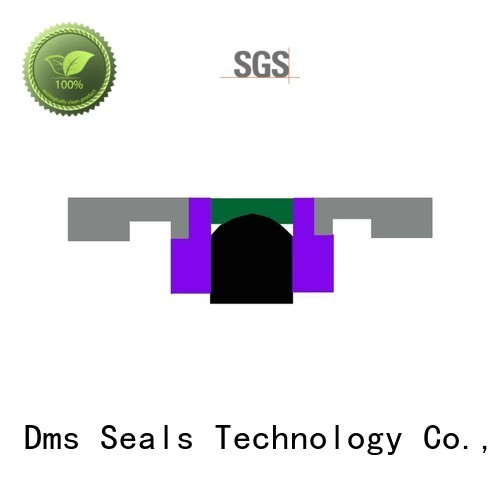 Quality DMS Seal Manufacturer Brand oring seal piston seals