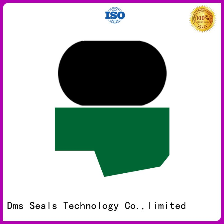 DMS Seal Manufacturer ptfe hydraulic rod seals rod