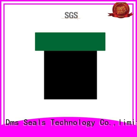 ptfe seal pneumatic piston seals DMS Seal Manufacturer manufacture