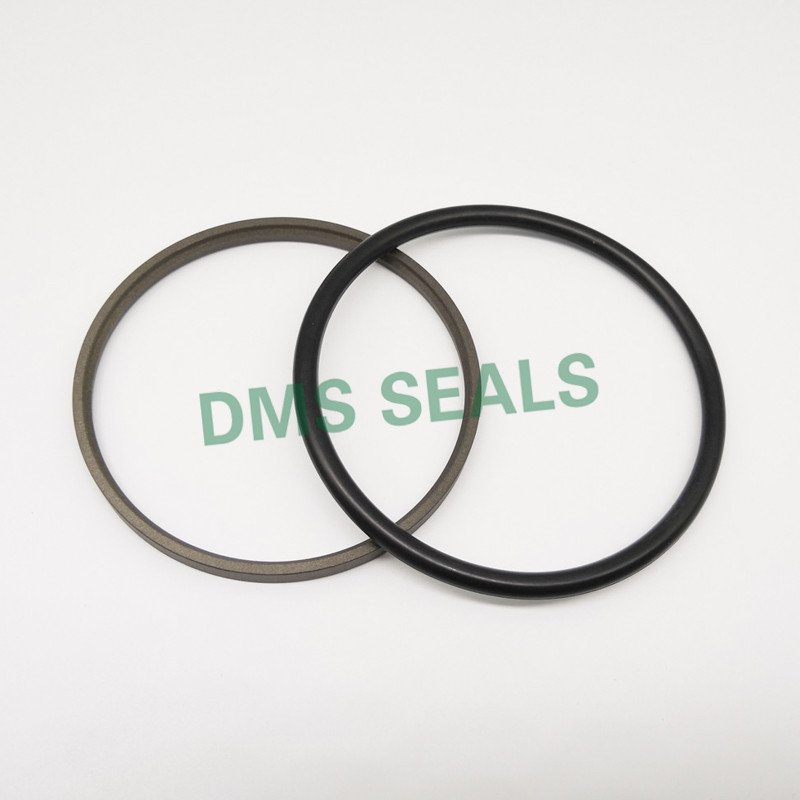 DMS Seal Manufacturer GSJ - PTFE Hydraulic Rod Seal with NBR/FKM O-Ring Rod Seals image12