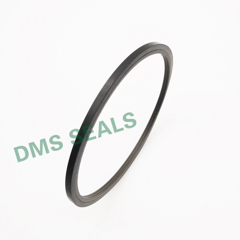 SPN - PTFE Hydraulic Rod Seal with NBR/FKM O-Ring