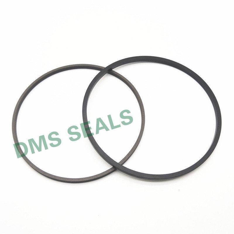 SPN - PTFE Hydraulic Rod Seal with NBR/FKM O-Ring