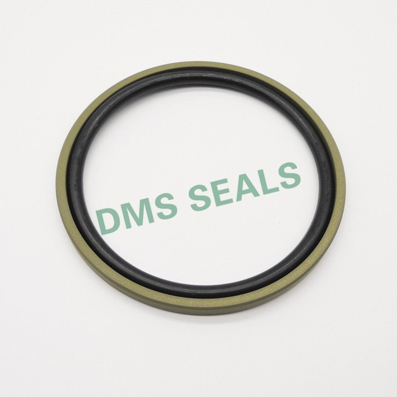 DMS Seal Manufacturer Array image85