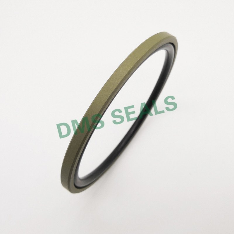 DMS Seal Manufacturer GSF - PTFE Hydraulic Piston Seal with NBR/FKM O-Ring Piston Seals image19