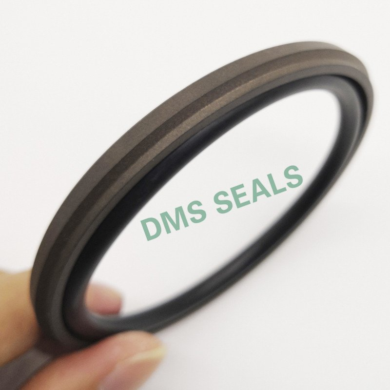GSD - PTFE Hydraulic Piston Seal with NBR/FKM O-Ring