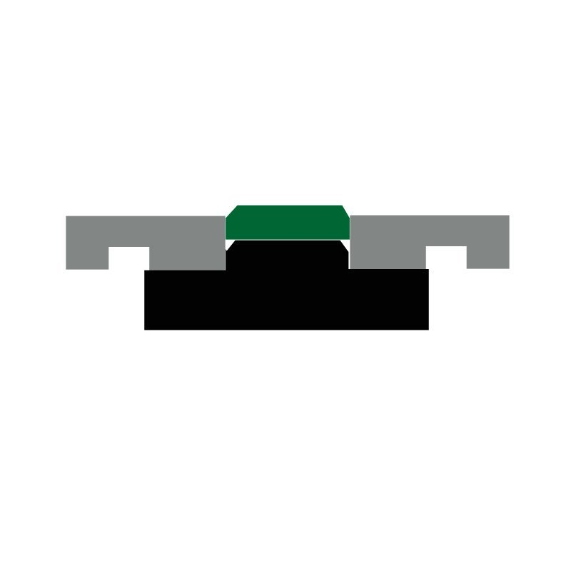 DKDF - PTFE Hydraulic Piston Seal with NBR/FKM O-Ring