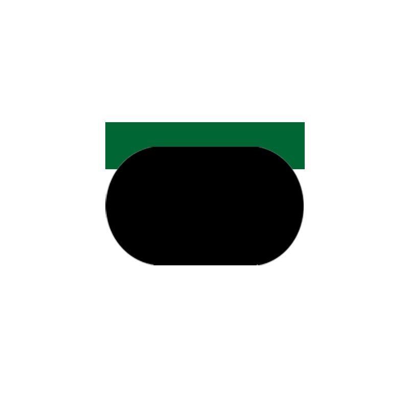 SPGC - PTFE Hydraulic Piston Seal with NBR/FKM O-Ring