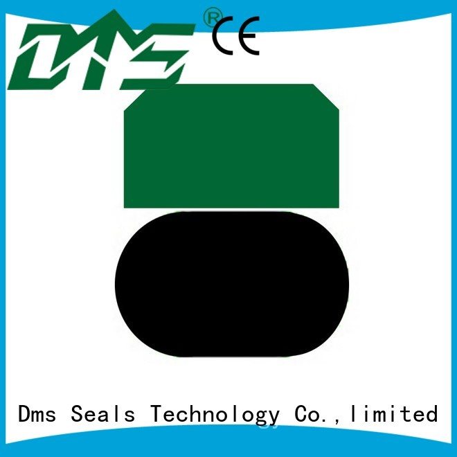 Quality DMS Seal Manufacturer Brand pneumatic piston seals ptfe