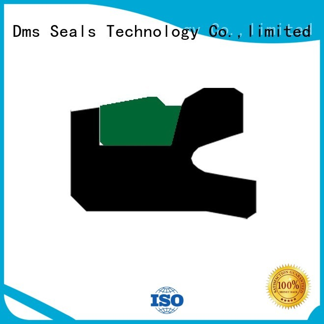 pneumatic piston seals ptfe piston DMS Seal Manufacturer Brand piston seals