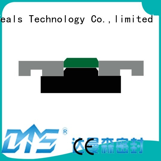 seal pneumatic piston seals nbrfkm DMS Seal Manufacturer Brand piston seals ptfe piston hydraulic