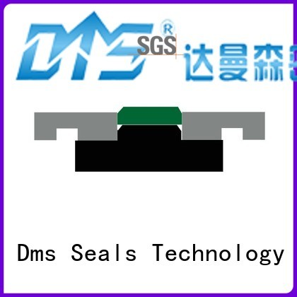 hydraulic ptfe Hot pneumatic piston seals seal DMS Seal Manufacturer Brand