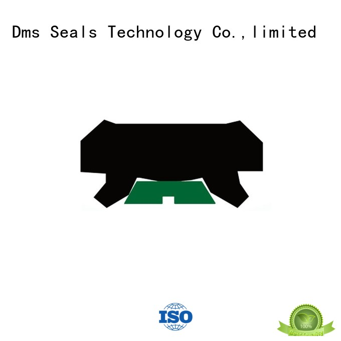 ptfe oring hydraulic rod seals DMS Seal Manufacturer Brand