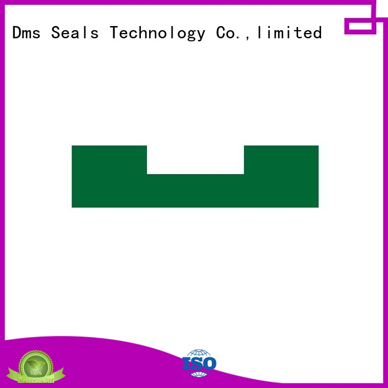 Wholesale bearing oil seal ring nbrfkm DMS Seal Manufacturer Brand