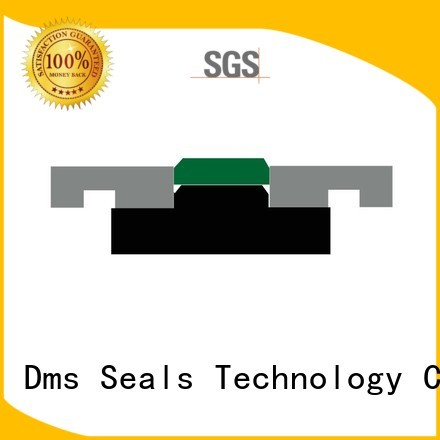 oring pneumatic piston seals seal DMS Seal Manufacturer company
