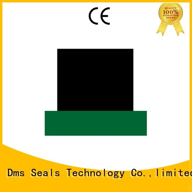 DMS Seal Manufacturer Brand nbrfkm hydraulic rod seals oring factory