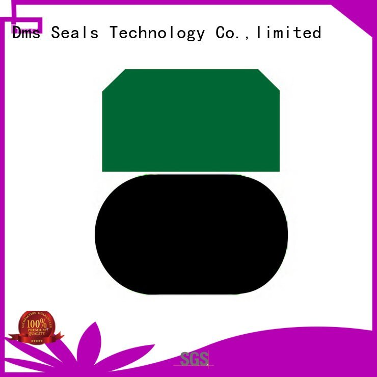 DMS Seal Manufacturer seal piston seals oring nbrfkm