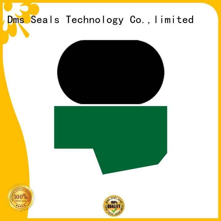 ptfe hydraulic hydraulic oring DMS Seal Manufacturer hydraulic rod seals