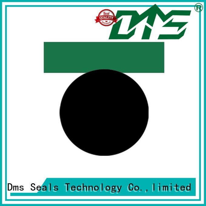 DMS Seal Manufacturer Brand hydraulic oring piston seals seal factory