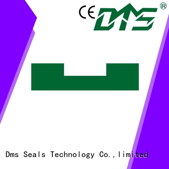 Custom oring ptfe bearing element DMS Seal Manufacturer element