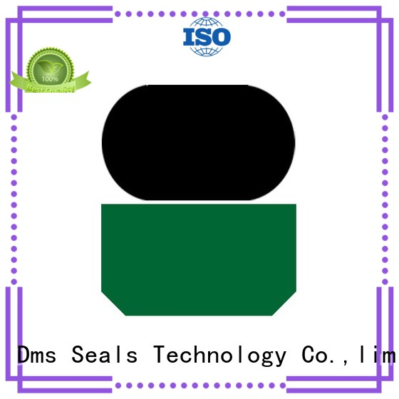 hydraulic seal nbrfkm ptfe DMS Seal Manufacturer Brand rod seals supplier