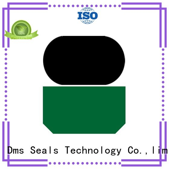 DMS Seal Manufacturer Brand oring seal hydraulic rod seals hydraulic