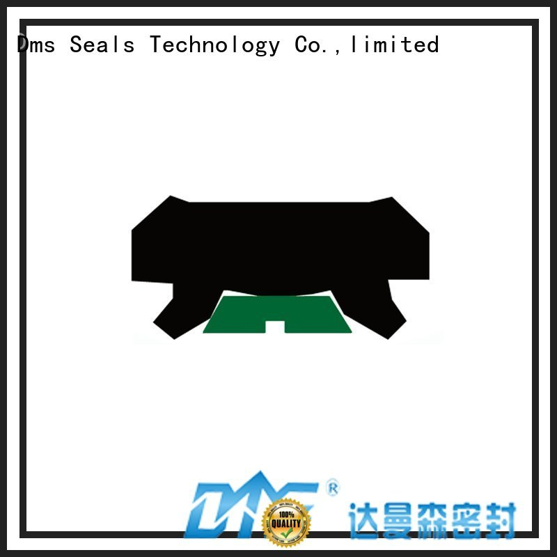Custom ptfe rod seals oring DMS Seal Manufacturer