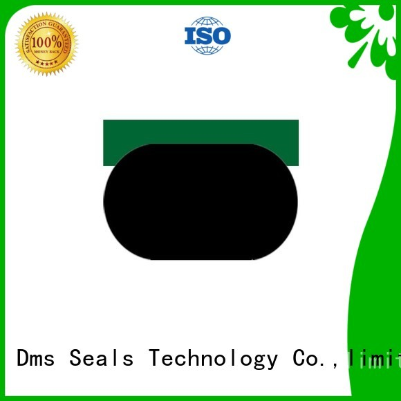 pneumatic piston seals nbrfkm seal DMS Seal Manufacturer Brand piston seals