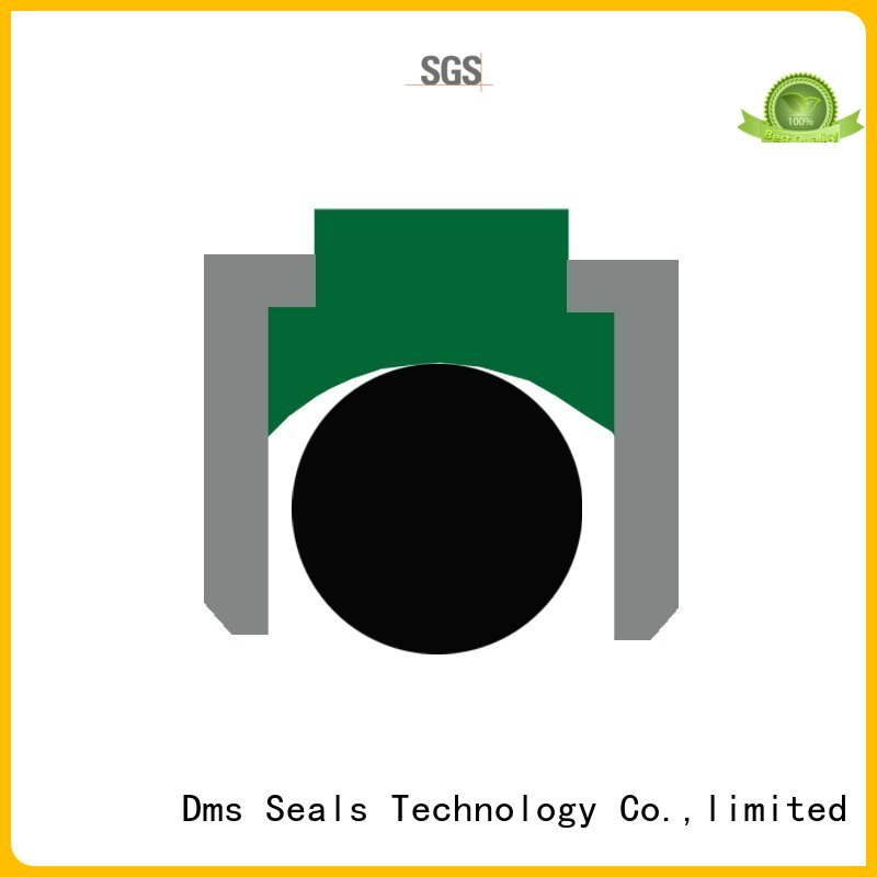 DMS Seal Manufacturer Brand ptfe hydraulic pneumatic piston seals