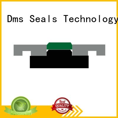 DMS Seal Manufacturer Brand oring hydraulic piston seals nbrfkm factory