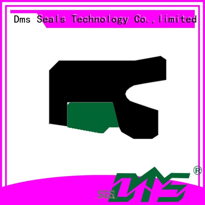oring hydraulic OEM rod seals