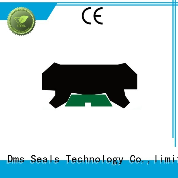 rod seal ptfe DMS Seal Manufacturer Brand hydraulic rod seals manufacture