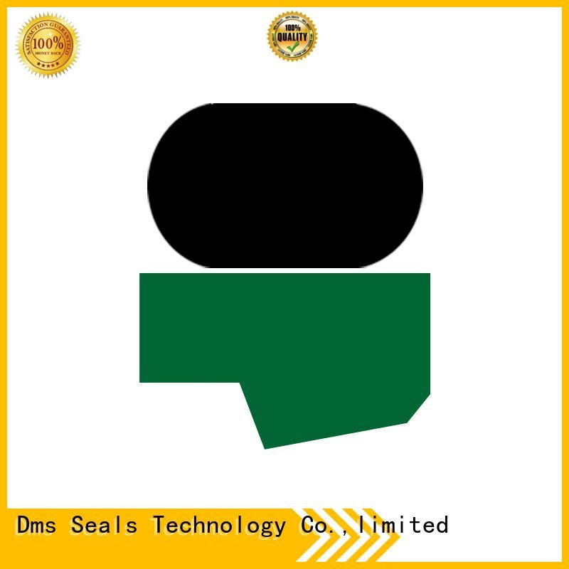 seal rod seals ptfe DMS Seal Manufacturer company