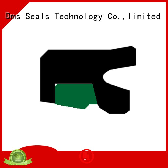 hydraulic nbrfkm rod seals seal DMS Seal Manufacturer