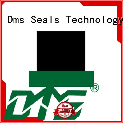 DMS Seal Manufacturer hydraulic oring seal hydraulic rod seals rod