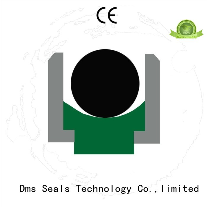 oring ptfe rod seals seal DMS Seal Manufacturer