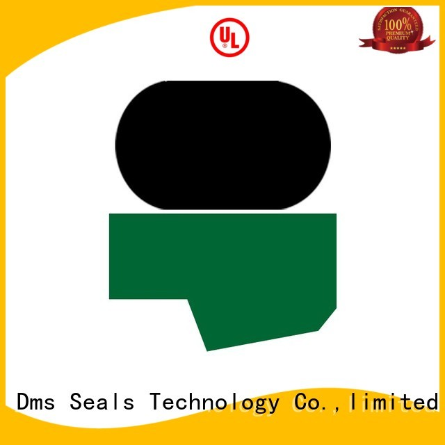 Custom nbrfkm rod seals oring DMS Seal Manufacturer