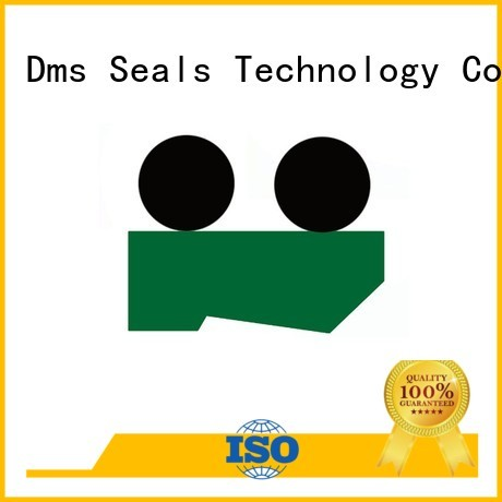 hydraulic wiper seals ptfe seal Warranty DMS Seal Manufacturer