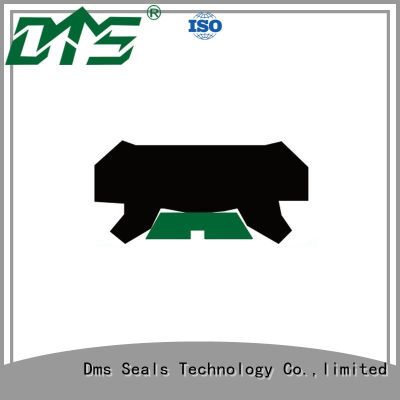 oring ptfe hydraulic rod seals DMS Seal Manufacturer Brand