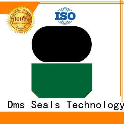 Quality DMS Seal Manufacturer Brand hydraulic rod seals