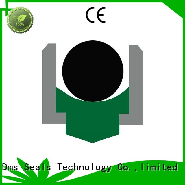 DMS Seal Manufacturer Brand ptfe nbrfkm rotary shaft seals hydraulic supplier