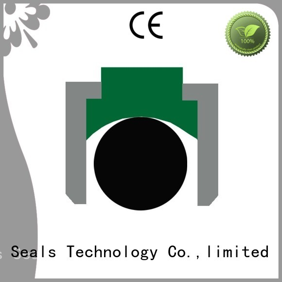 Hot nbrfkm piston seals oring seal DMS Seal Manufacturer Brand