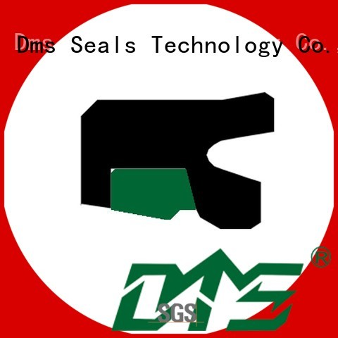 Quality DMS Seal Manufacturer Brand oring seal rod seals