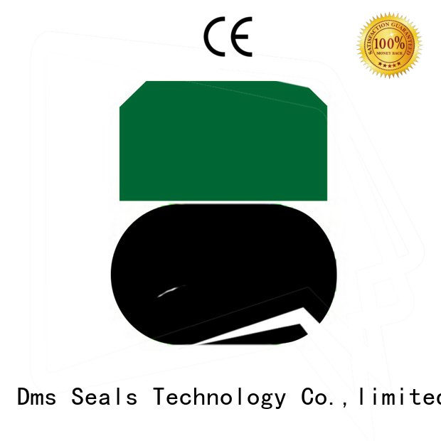 DMS Seal Manufacturer Brand piston ptfe piston seals