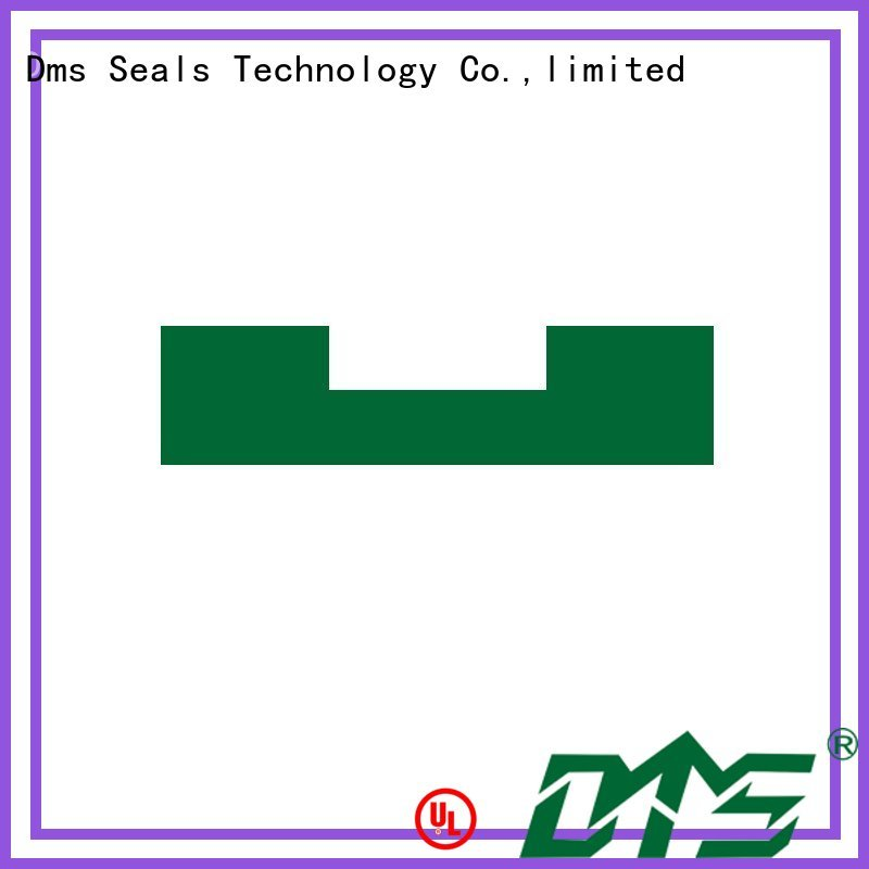 DMS Seal Manufacturer Brand ptfe bearing element hydraulic factory