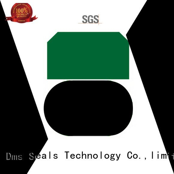 nbrfkm piston piston seals ptfe DMS Seal Manufacturer