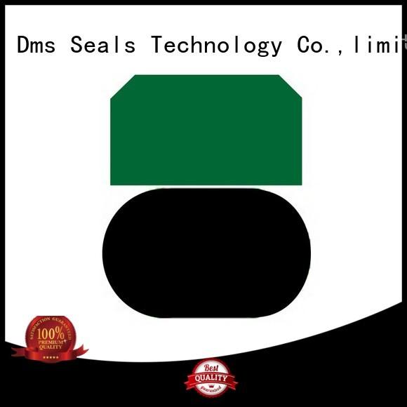 piston piston seals hydraulic nbrfkm DMS Seal Manufacturer company