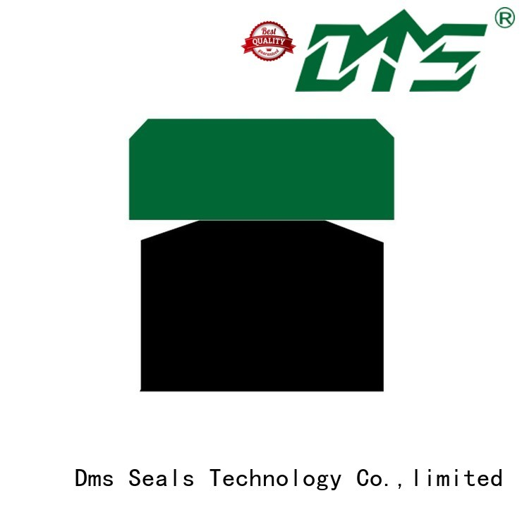 hydraulic piston pneumatic piston seals DMS Seal Manufacturer manufacture