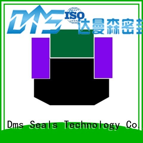 ptfe pneumatic piston seals seal DMS Seal Manufacturer company