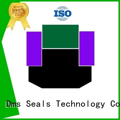 DMS Seal Manufacturer Brand seal nbrfkm piston pneumatic piston seals ptfe