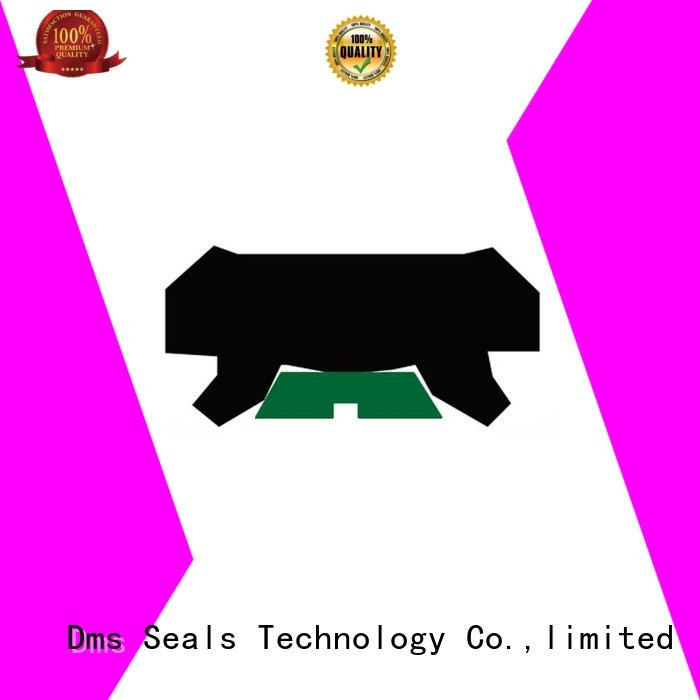 hydraulic Custom oring rod seals seal DMS Seal Manufacturer
